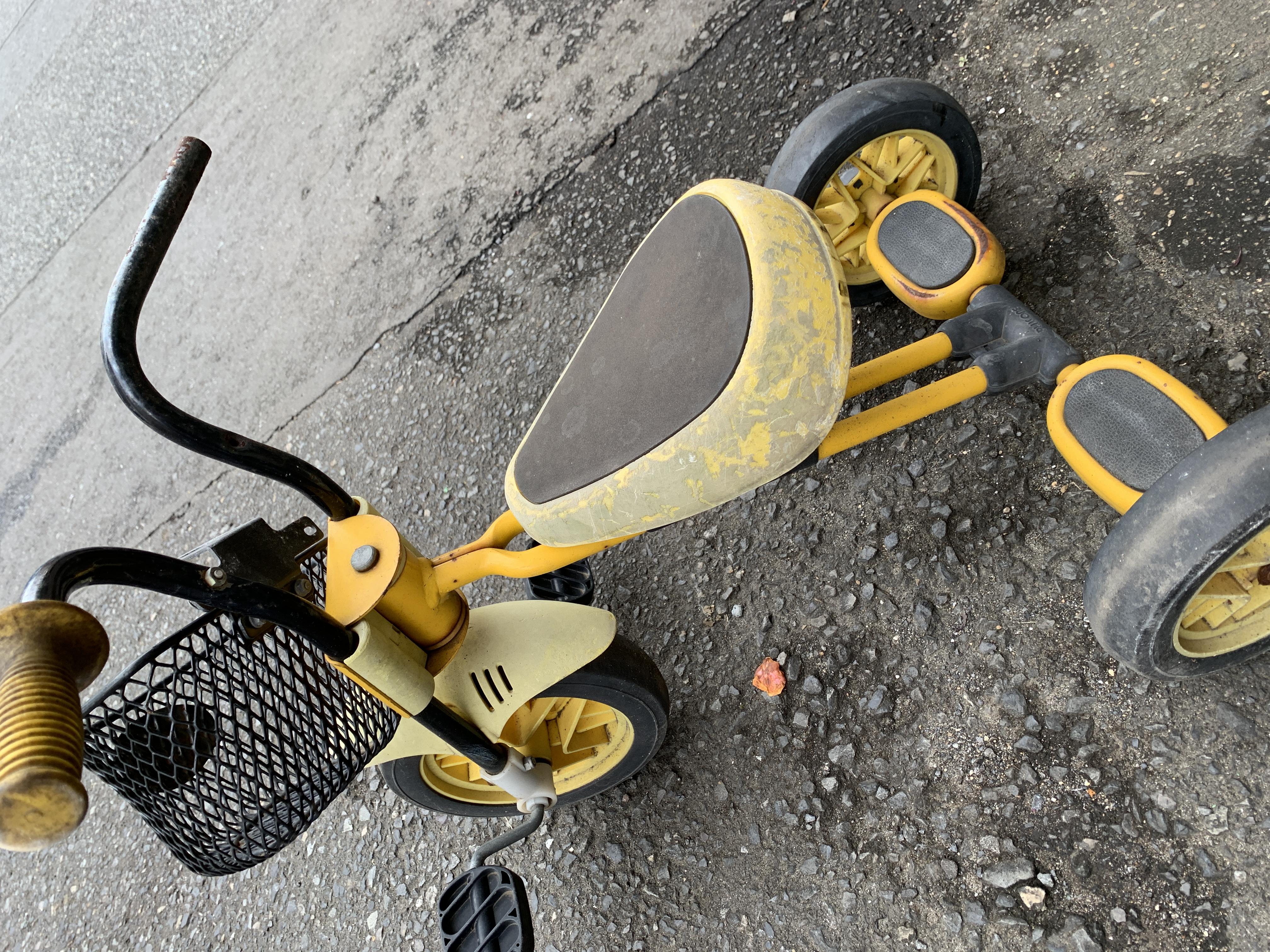 ジジと自転車🚲